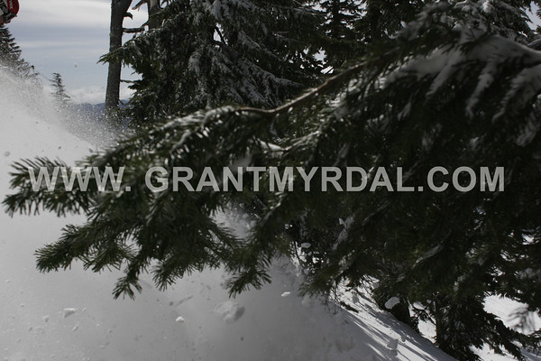 fri april 27 lower heather half moon bowl skiers right in gully ALL IMAGES LOADED